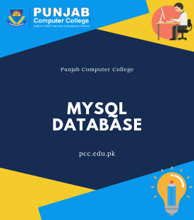 punjab computer college mysql database